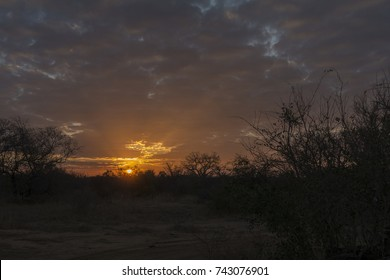 Beautiful sunset in the african bush