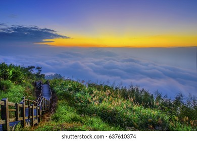 Beautiful sunset of  Alishan(Ali mountain) National Park with dramatic clouds of sea,Taiwan.