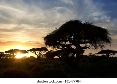 Beautiful sunset in Amboseli National Park 12