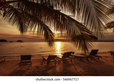 Beautiful sunset at the beach with palm trees and beach chair. Holliday concept.
