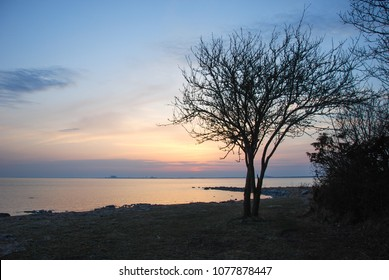 Beautiful sunset by the coast of the swedish island Oland in the Baltic Sea