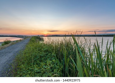 Beautiful sunset by the lake, green flowers and color sky, Rozkos, Czech republic - Shutterstock ID 1440923975