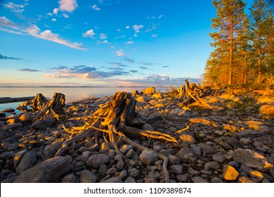 beautiful sunset by the lake, Karelia, taiga