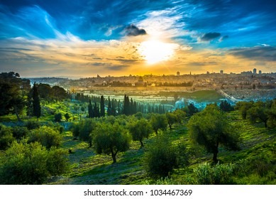 Beautiful sunset clouds over the Old City Jerusalem with Dome of the Rock, the Golden (Mercy) Gate and St. Stephen's or Lions Gate; view from the Mount of Olives with olive trees in the foreground