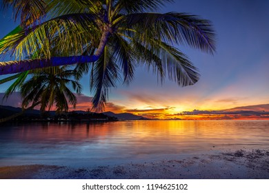 Beautiful sunset with coconut palm tree on the beach in koh samui thailand.