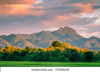 Beautiful sunset and dark clouds on rice fields with trees and big mountain background in Phrae Thailand.
