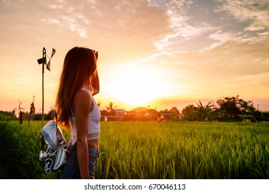 Beautiful sunset with girl watching. Rice field. Bali Indonesia