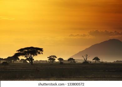 Beautiful sunset in Kenya 01
