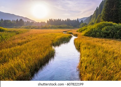 Beautiful sunset landscape in Zelenci Springs nature reserve near the town of Kranjska Gora, Slovenia. Small river with clear water. Unspoiled natural beauty