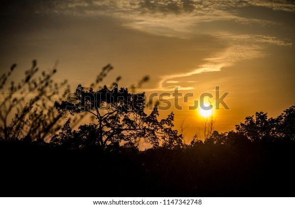 Beautiful sunset in the middle of the Amazon