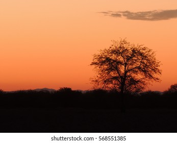 Beautiful sunset in the northern desert of Tarapacá - Chile