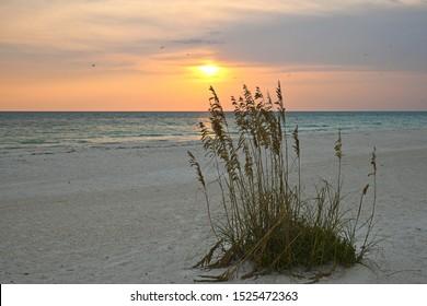 A Beautiful Sunset on the Gulf Coast of Florida