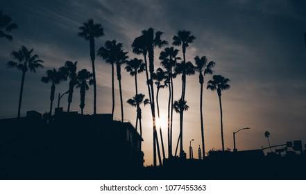 Beautiful sunset on Hollywood Boulevard - California.