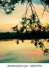 The beautiful sunset on the lake. Shallow DOF