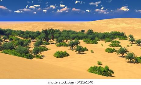 Beautiful sunset on the Sahara  desert