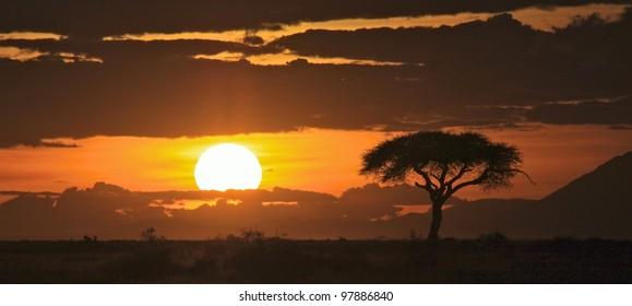 Beautiful sunset on the savanna plains of East Africa