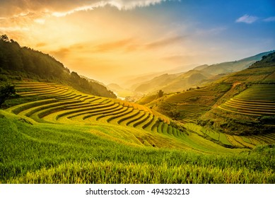 Beautiful Sunset on terraced rice field in harvest season in MuCangChai, Vietnam