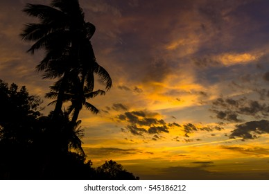 Beautiful sunset on tropical beach,silhouette coconut palm trees, amazing sky background