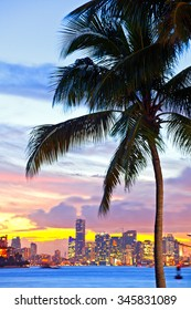 Beautiful sunset over  Downtown and the Port of Miami Florida, beautiful colorful sunset with silhouettes of palm trees