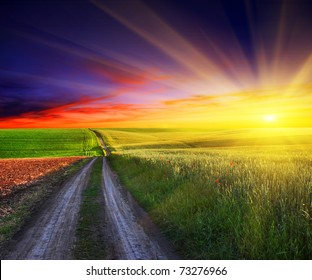 beautiful sunset over field with green grass