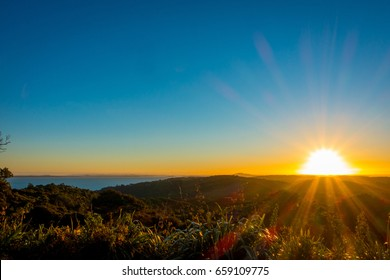 Beautiful sunset over the Hauraki Gulf, with trees and hills silhouetted in the foreground. Taken on the beach at Whakanewha Camp Ground on Waiheke Island, New Zealand