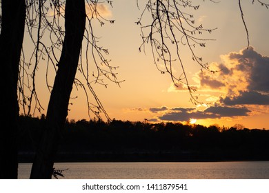 Beautiful sunset over a lake with clouds. A maple tree and a forest with hills is the background.