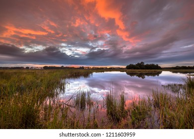 Beautiful sunset over marshland in natural landscape in Westerwolde nature reserve in the Netherlands