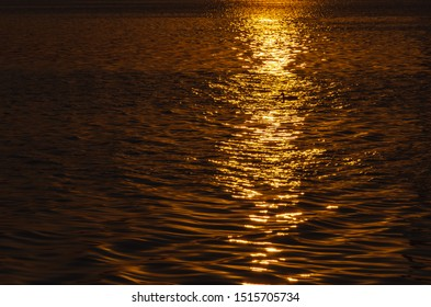 Beautiful sunset over the river. A duck in the solar path on the surface of the water. Reflection of the setting sun