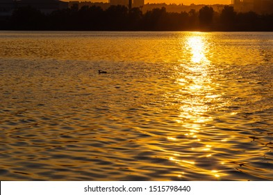 Beautiful sunset over the river. The solar path on the surface of the water and a duck. Reflection of the setting sun