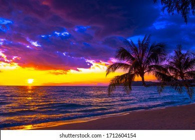 Beautiful sunset over the sea on tropical beach with palm tree and colorful sky for travel and vacation