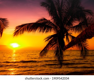 Beautiful sunset over the sea with palm tree on the tropical beach background for travel