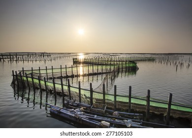 beautiful sunset in Oyster Farm for adv or others purpose use