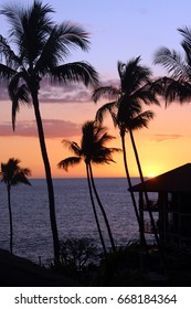 beautiful sunset with palm trees in Hawaii, Big Island Hawaii
