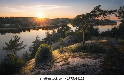 Beautiful sunset rays of sun with clean nordic nature, pine tree on rocks in North Europe, Baltic sea, gulf of Finland