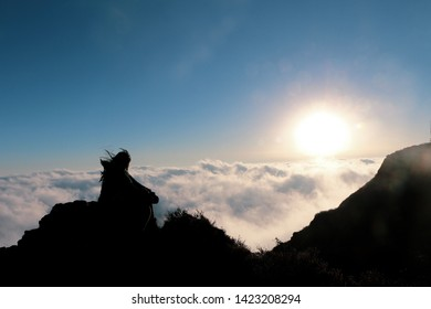 A beautiful sunset from Sandakphu on a cold windy winter evening, above the clouds, atop a mountain...