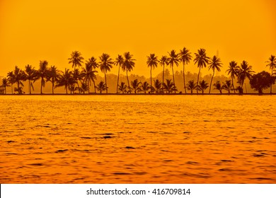 beautiful sunset scene of backwaters Kerala with silhouette of palm trees, travel background, India