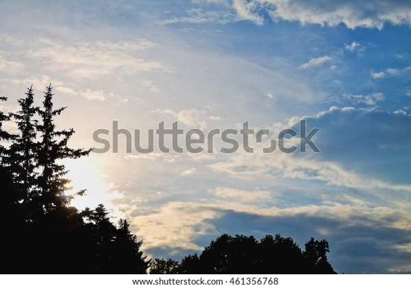 beautiful sunset sky with clouds and silhouettes of spruce trees
