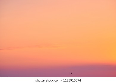 Beautiful sunset sky. Nature background. Peach color.