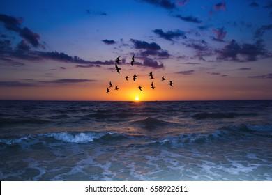 Beautiful sunset in St. Petersburg Florida.