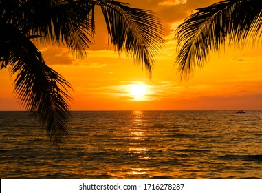 Beautiful sunset tropical beach with palm tree and blue sky for travel and vacation in holiday relax time