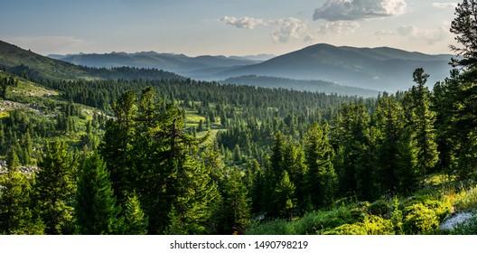 Beautiful sunset view in cedar forest in front of sayan mountain range, Ergaki national park, Krasnoyarsk region, Siberia, Russia