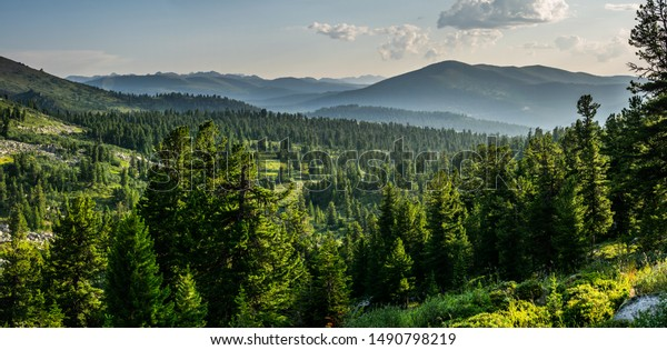 beautiful-sunset-view-cedar-forest-600w-