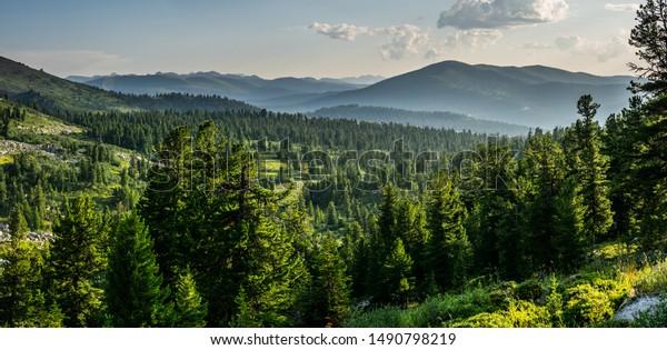 beautiful-sunset-view-cedar-forest-600w-