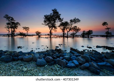 beautiful sunset and view tree in the middle of the sea Locations Anyer Beach Banten Indonesia