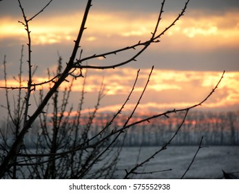 beautiful sunset in the winter