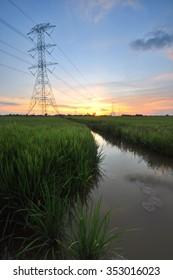 Beautiful sunset/sunrise over green grass field.