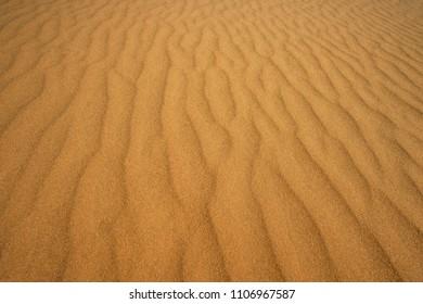 beautiful surface of sand dunes at sunset. Spring season.