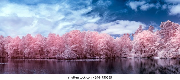 Beautiful surreal false color infra red Summer landscape of lake and woodland in English countryside