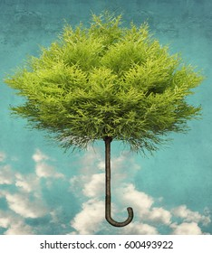 Beautiful surreal imagine that represent a foliage tree shaped as umbrella on a background with blue sky and clouds