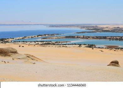 Beautiful surreal oasis in a sandy desert, Fayoum oasis in Sahara desert, Egypt, Africa
